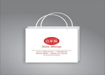 Túi giấy Kraf 01